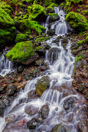 Winter Waterfall, Mt. Tamalpais State Park, Marin County, CA